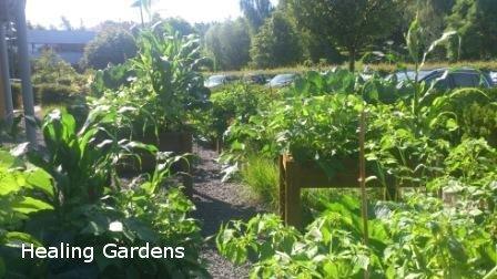 Healing Gardens lr web naam